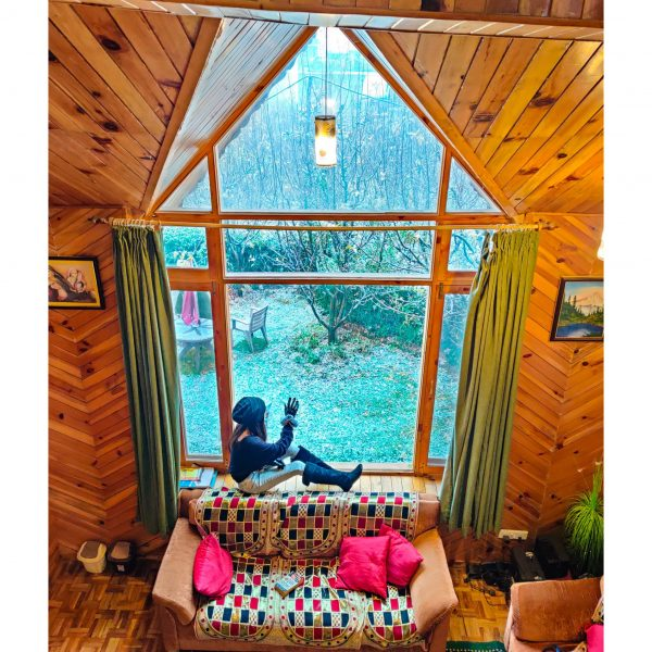 HikerWolf-stay-at-Manali-scaled