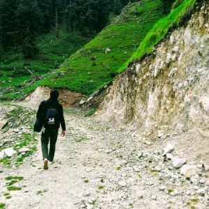 HikerWolf-in-Himachal-scaled