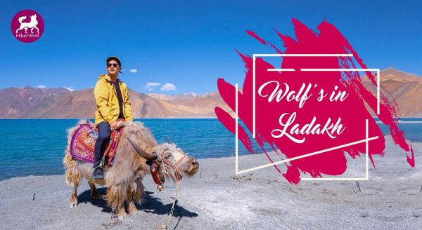 Enjoy Trip in Ladakh with Hikerwolf