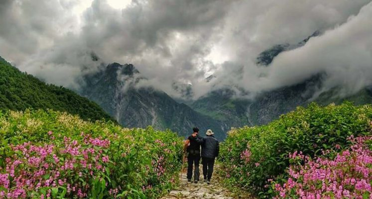 Valley Of Flowers Route