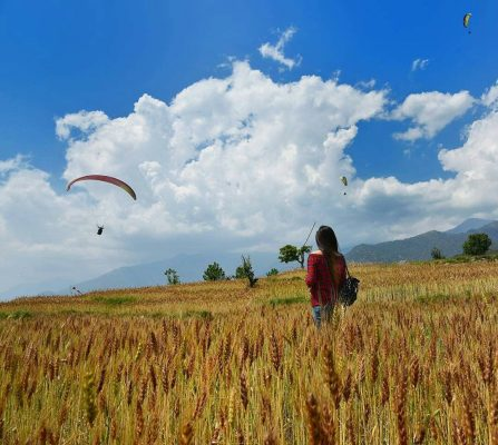 Paragliding and Hand-gliding in Bir, palampur