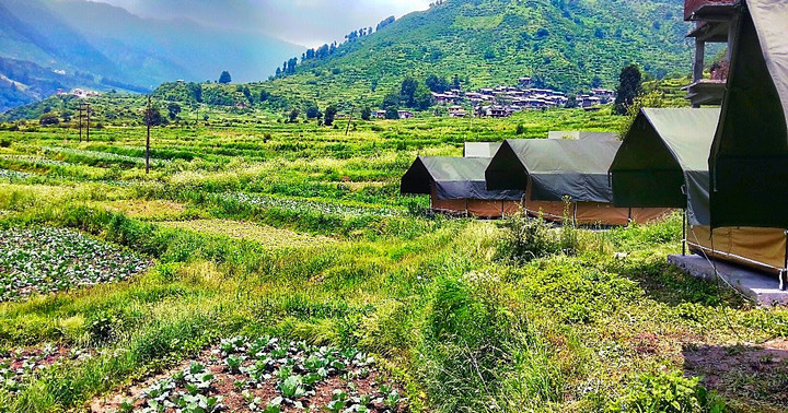 Barot valley Himachal tour